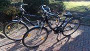 NSU-Bikes-1